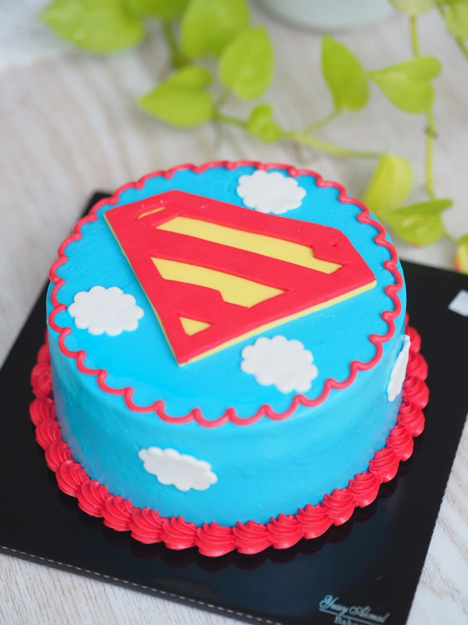 Superhero Series ( Superman) 15cm